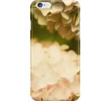 Hydrangea Polaroid III iPhone Case/Skin