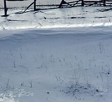 Frozen Ice and Fenceline Silhouette by DMHImages