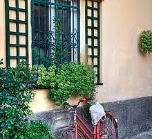 bicycle by oreundici