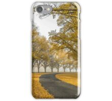 Gostwyck Road is lined with Gold - Uralla NSW Australia iPhone Case/Skin
