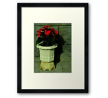 The Mysterious Shadow Framed Print