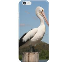 Portrait of a Pelican iPhone Case/Skin