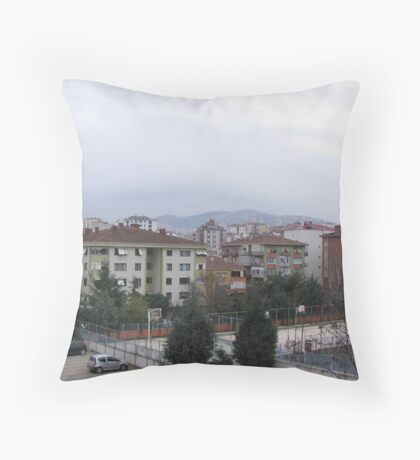 A day on January Throw Pillow