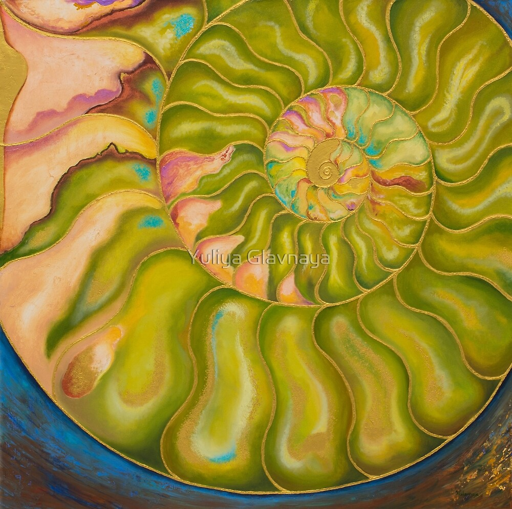 Nautilus by Yuliya Glavnaya