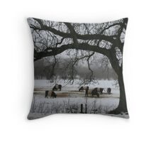 Cows in the field Throw Pillow