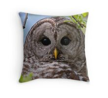Barred Owl at McGregor Marsh Throw Pillow