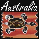 Trible Turtle Australia by Kayleigh Walmsley