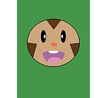 Chespin Face Photographic Print