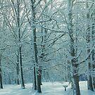 white winter by ANNABEL   S. ALENTON