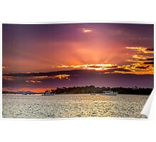 Tiger Mullet Sundown Near Jacobs Well Qld Australia Poster