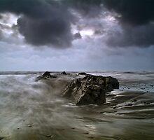 Jackson Bay, South Westland by Paul Mercer