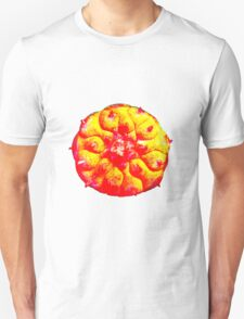 Psychedelic Solar Peyote Journey Unisex T-Shirt