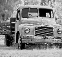 The old truck by Chris Dowd