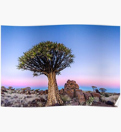 Dusk in the Desert - Namibia Africa Poster