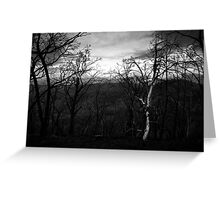 Marysville - Forest Greeting Card
