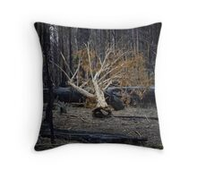 Marysville - Forest II Throw Pillow