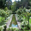 The White Garden, Kennerton Green, near Bowral NSW by BronReid