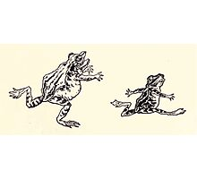 The Zankiwank & the Bletherwitch by Shafto Justin Adair Fitz Gerald art Arthur Rackham 1896 0042 Frogs Photographic Print