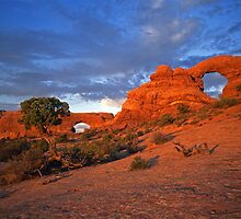 North Window & Turret Arches by Mike Norton