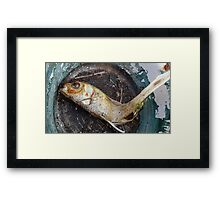 My goldfish has lost its color n°1 Framed Print