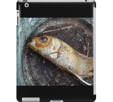 My goldfish has lost its color n°1 iPad Case/Skin