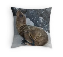 Sea Lion Pup Throw Pillow