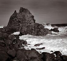 Rock, Cape Woolamai Phillip Island by SteveJSharp