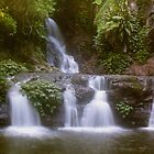 Elabana Falls, Lamington National Park by smallan