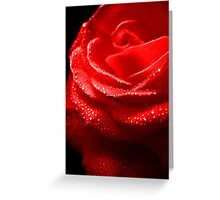 Rose Red. Greeting Card