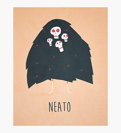 Neato Photographic Print