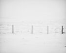 Weather proof fence by clickinhistory