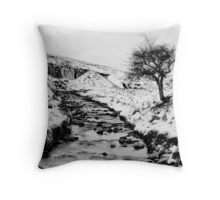 Remains of a moment Throw Pillow