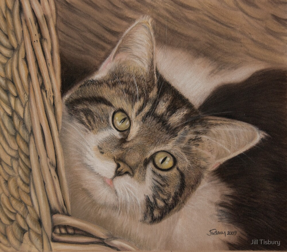 This is my basket by Jill Tisbury
