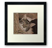 This is my basket Framed Print