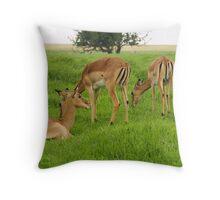Impalas Throw Pillow