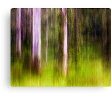Mitchell Park ~ an impressionist's view III Canvas Print