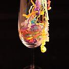 Celebrate by Tracy Duckett