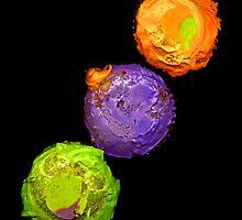 CUPCAKES by Daniel Sorine