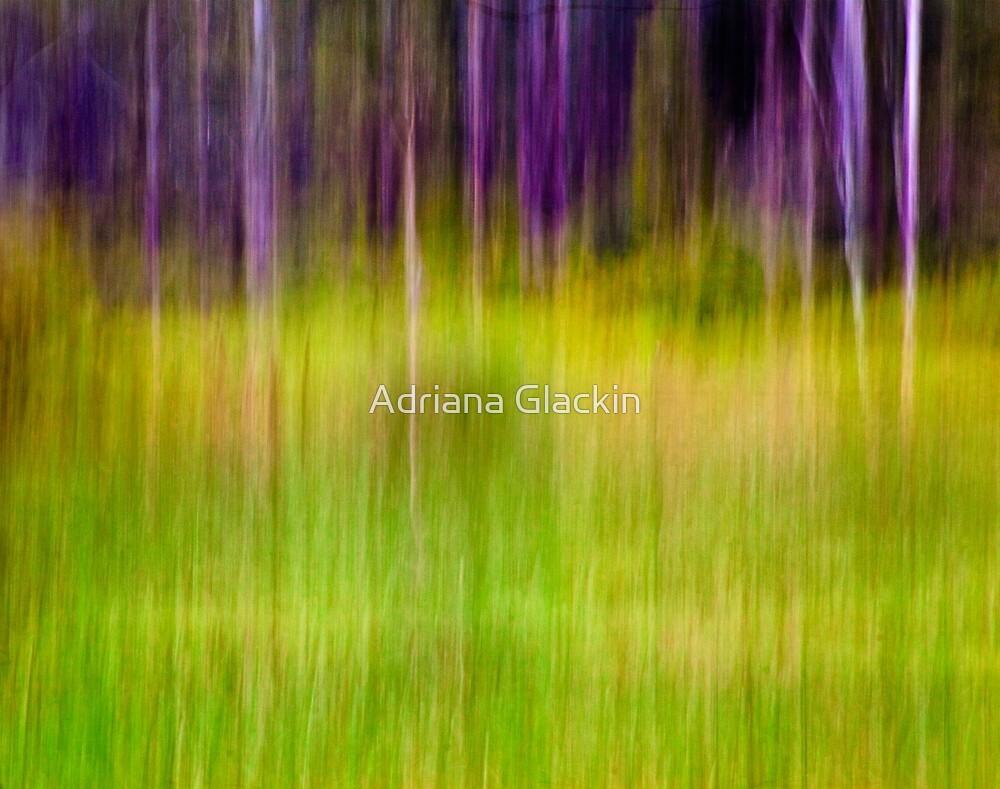 Mitchell Park ~ the impressionist's view I by Adriana Glackin