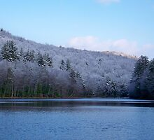 The Winter Lake by Dandelion Dilluvio