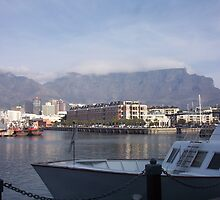 Looking out to Table Mountain, South Africa by heartyart