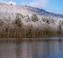 Winter Reflections by Dandelion Dilluvio