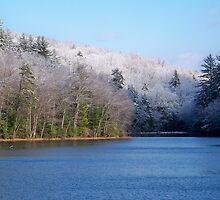 Winter Lake by Dandelion Dilluvio