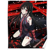 Akame from Akame ga kill Poster