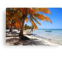 Caribbean beach with boat Canvas Print