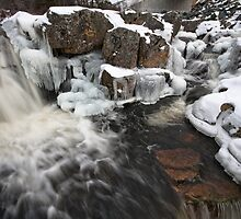 Manuels River in Winter by Stephen Rowsell