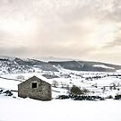 A barn, the Dales and some snow by Dan Shalloe