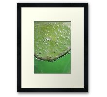 Lime Tingle Framed Print