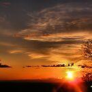 Setting Sun by NancyC