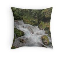Marian Falls Throw Pillow